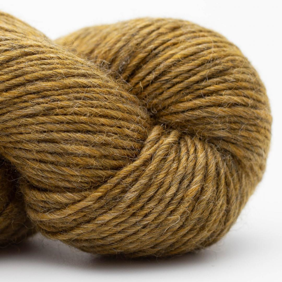 Erika Knight Wild Wool 100g pootle